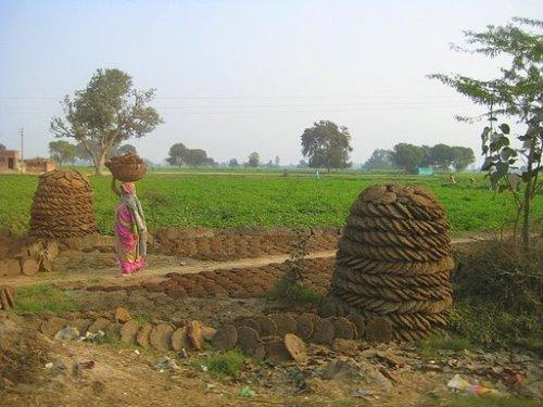 India.08.09 1174
